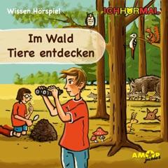 Im Wald Tiere entdecken (Wissen Hörspiel)