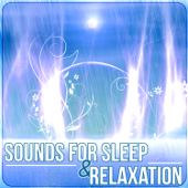 Sounds For Sleep & Relaxation – Music Therapy To Cure Insomnia, Relaxing Rain Ambience & Ocean Waves-Peaceful Sleep Music Collection