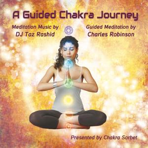 DJ Taz Rashid - A Guided Chakra Journey feat. Charles Robinson
