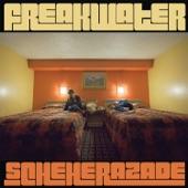 Freakwater - Velveteen Matador