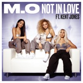 Not in Love (feat. Kent Jones) - Single