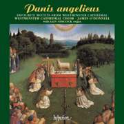Ave Maria - Westminster Cathedral Choir, James O'Donnell, Iain Simcock & Nicholas Keay