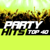 Party Hits Top 40 - Various Artists