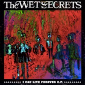 The Wet Secrets - Quelle Surprise