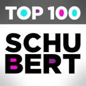Beaux Arts Trio - Schubert: Piano Trio No.1 in B flat, Op.99 D.898 - 1. Allegro moderato