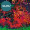 Tame Impala - Mind Mischief artwork
