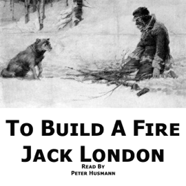 To Build a Fire (Unabridged) audiobook
