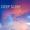 Deep Sleep - Relaxing Music Therapy, Slow Long Sleeping Songs for Healing, Massage, Yoga and Quietness, Sounds to Help You Relax Better at Night, New Age Meditation Lullabies for Wellness and Spirituality - Deep Sleep Music Delta Binaural 432 Hz & Deep Sleep
