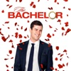 The Bachelor, Season 20 wiki, synopsis