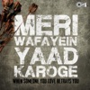 Meri Wafayein Yaad Karoge (When Someone in Love Betrays You)