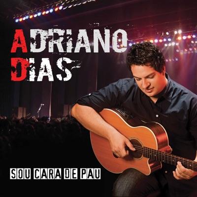 Sou Cara de Pau - Adriano Dias