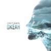 L'One - Океан (feat. Фидель) artwork