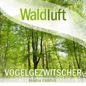 [Download] Vogelstimmen im Frühling (Naturgeräusche) MP3