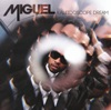 Kaleidoscope Dream (Deluxe Version), Miguel