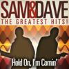 Samuel David Moore & Dave Prater - Hold On I'm Coming artwork