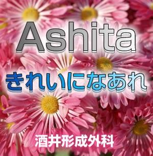 Ashitaきれいにな〜れ