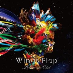 Wings Flap - EP