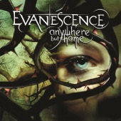 Evanescence - Going Under