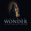Isn t She Lovely - Stevie Wonder mp3