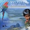 Sinfonia da Natureza Brazilian Landscapes