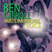 Multidimensional Voice