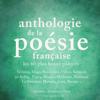 Arthur Rimbaud, Paul Verlaine, Alfred de Musset, Charles Baudelaire, Alfred de Vigny & Francois Villon - Anthologie de la poésie française  artwork