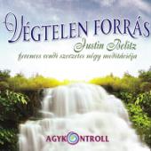Végtelen Forrás (feat. Domján László & Sólyom Ildikó)