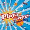 Playa Dance Summer Hits - Various Artists