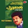 Patturumal Mappila Songs