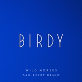 Wild Horses (Sam Feldt Remix) - Single