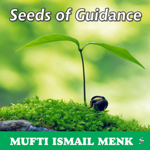 Mufti Ismail Menk - Seeds of Guidance