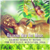 Relaxing New Age Music: Calming Sounds of Nature for Deep Sleep, Meditation, Yoga, Healing Therapy, Ambient Music