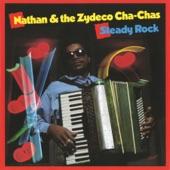 Nathan & the Zydeco Cha Chas - Zydeco Joe