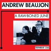 Andrew Beaujon - Angry Canadians