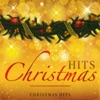 Christmas Time by Bryan Adams iTunes Track 7