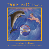 Dolphin Dreams-Jonathan Goldman