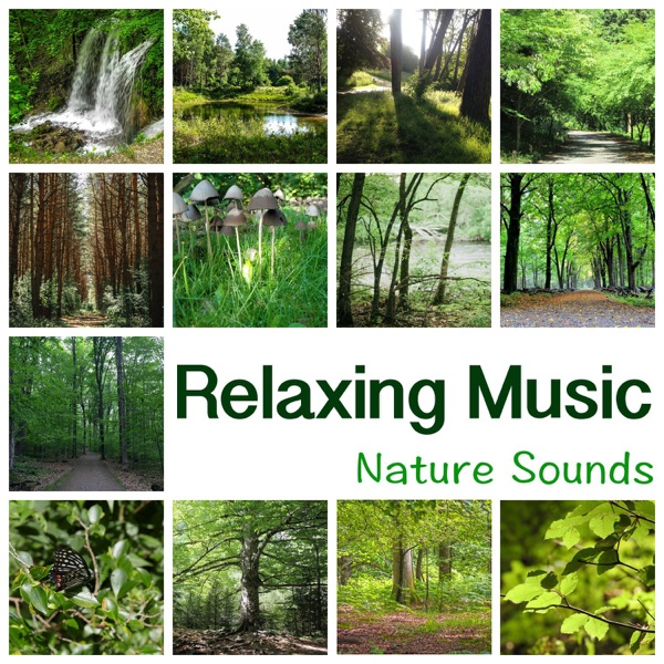 New Age - Relaxing Music – New Age Music for Yoga Meditation, Reiki, Ayurveda, Deep Sleep, Study, Reading, Concentration, Learning, Massage and Spa, Fall Asleep
