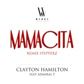 Mamacita (feat. Admiral T) [Stepperz Remix] - Single