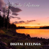 Vitalie Rotaru - Digital Feelings обложка