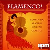 Flamenco! Romantic Spanish Guitar Classics