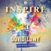 Inspire - Dovid Lowy