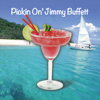 Pickin' On Jimmy Buffett - Pickin' On Series