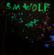 Neon Debris - S.M. Wolf