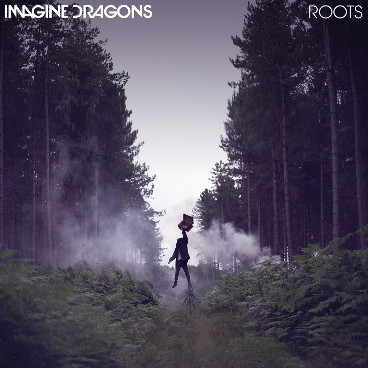 Roots - Single Imagine Dragons CD cover