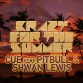 Crazy For the Summer (feat. Pitbull & Shawn Lewis) - Single