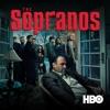 The Sopranos, Season 6, Pt. 1 wiki, synopsis