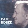 Pavel Bobek & pratele - Pavel Bobek