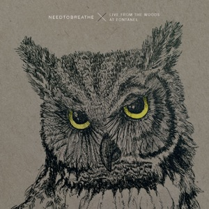 NEEDTOBREATHE - Drive All Night (Live From the Woods)