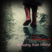 In Front of the Fireplace - Relaxing Sounds of Rain Music Club