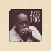 James Cotton/jimmie vaughn - Straighten Up Baby